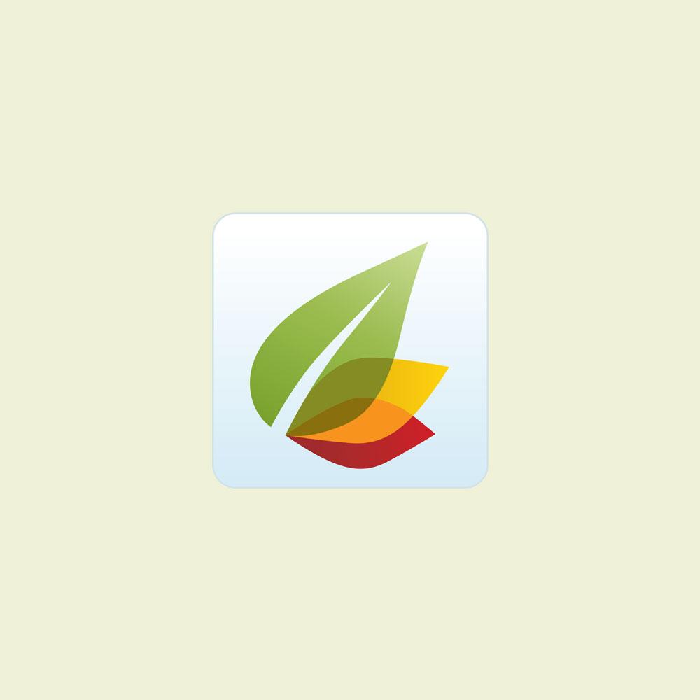 Euro Mobile App Icon